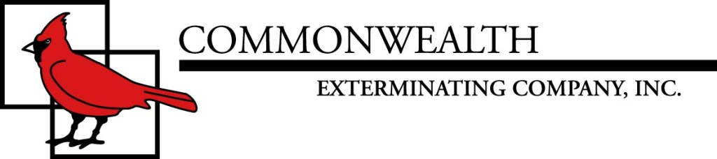 Commonwealth Logo-jpeg